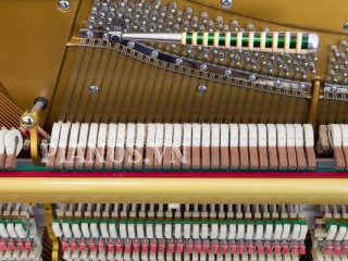 Báo Giá Lên Dây đàn Piano