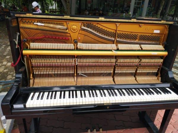 Cho Thuê đàn Piano -02