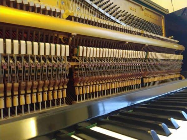 Cho Thuê đàn Piano -03