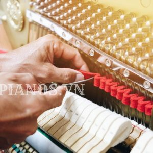 Lên Dây đàn Piano Giá