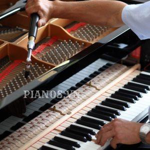 Lên Dây Piano