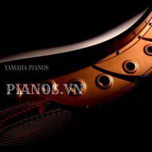 Sơn đàn Piano 3