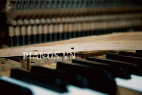 Sửa đàn Piano điện Tại Nhà Hà Nội
