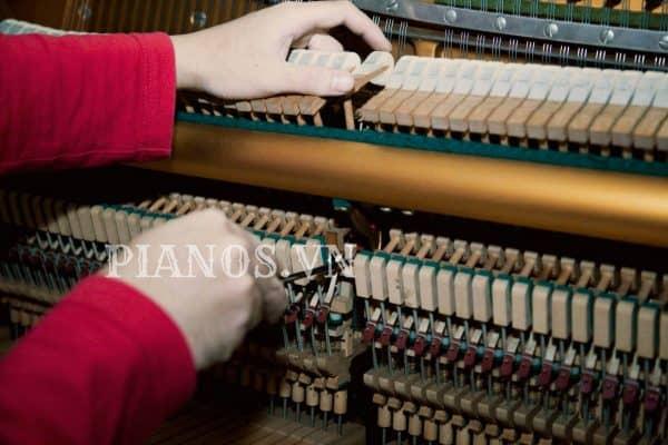 Sửa đàn Piano Tại Hà Nội