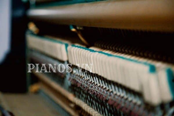 Sửa đàn Piano Tại Nhà