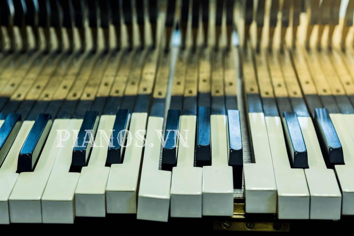 Thợ Sửa đàn Piano