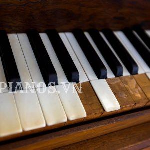 Thay Phím Trắng đàn Piano