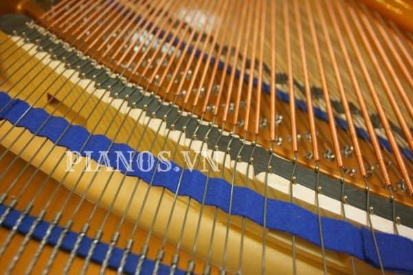 Vệ Sinh đàn Piano